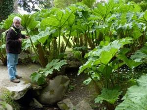 201-jardin (1280x960)