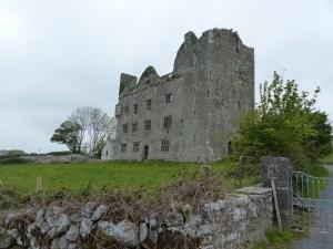 260-Leamaneh castle (1280x960)