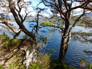 154-Loch Maree (1280x960)