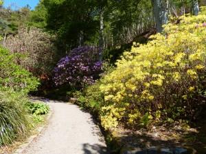162-Inverewe gardens  (1280x960)