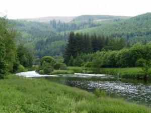 535-tweed valley (1280x960)