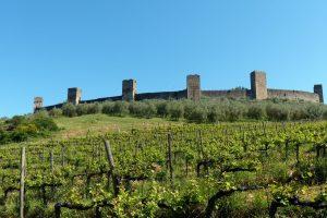 114-Monteriggioni (1) (1280x855)