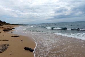 296-la côte (1280x855)